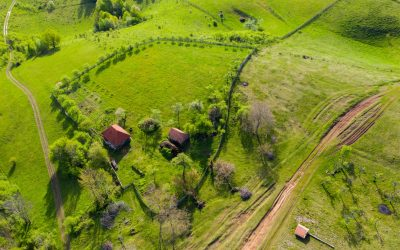 Why We Love Drone (And You Should, Too!)